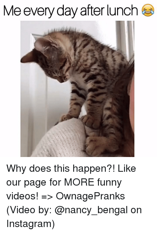 Why Doe: Me everyday after lunch Why does this happen?!  Like our page for MORE funny videos! => OwnagePranks  (Video by: @nancy_bengal on Instagram)