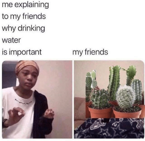 Drinking, Friends, and Memes: me explaining  to my friends  why drinking  water  is important  my friends