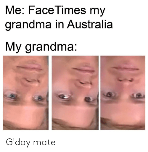 Grandma, Australia, and Mate: Me: FaceTimes my  grandma in Australia  My grandma: G'day mate