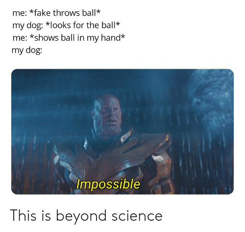 Fake, Science, and Dog: me: *fake throws ball*  my dog: looks for the ball*  me: *shows ball in my hand*  my dog:  Impossible This is beyond science