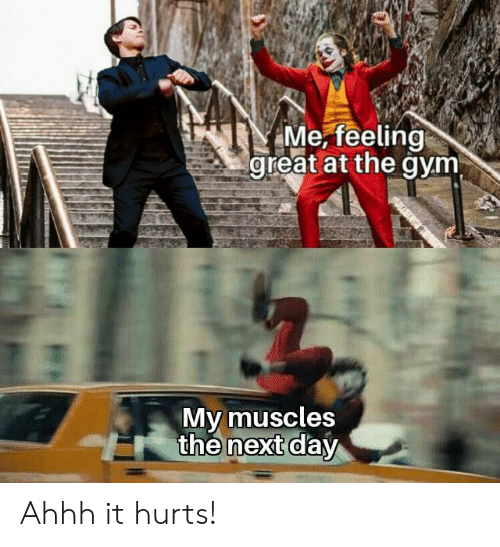 Gym, Ahhh, and Next: Me, feeling  great at the gym  My muscles  the next day Ahhh it hurts!
