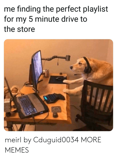 Dank, Memes, and Target: me finding the perfect playlist  for my 5 minute drive to  the store meirl by Cduguid0034 MORE MEMES