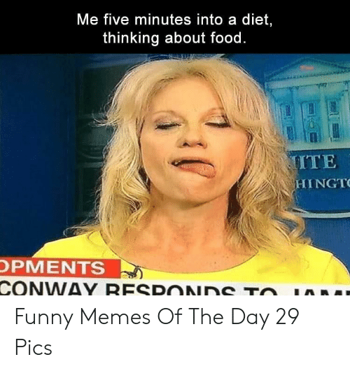 Five Minutes: Me five minutes into a diet,  thinking about food.  MITE  HINGT  OPMENTS  CONWAY RESPONDS TO Funny Memes Of The Day 29 Pics