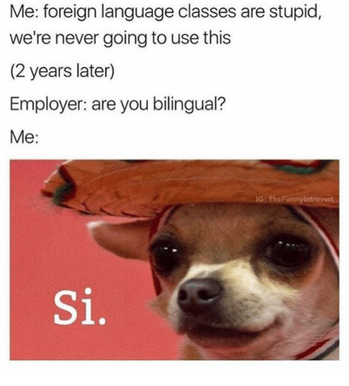 Funnyes: Me: foreign language classes are stupid,  we're never going to use this  (2 years later)  Employer: are you bilingual?  Me:  IG: The Funny Introvert  Si,
