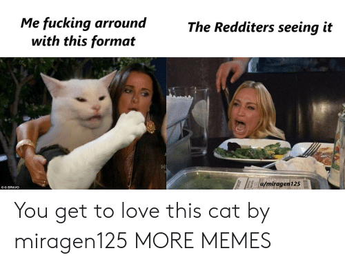 Dank, Fucking, and Love: Me fucking arround  with this format  The Redditers seeing it  u/miragen125  OO BRAVO You get to love this cat by miragen125 MORE MEMES