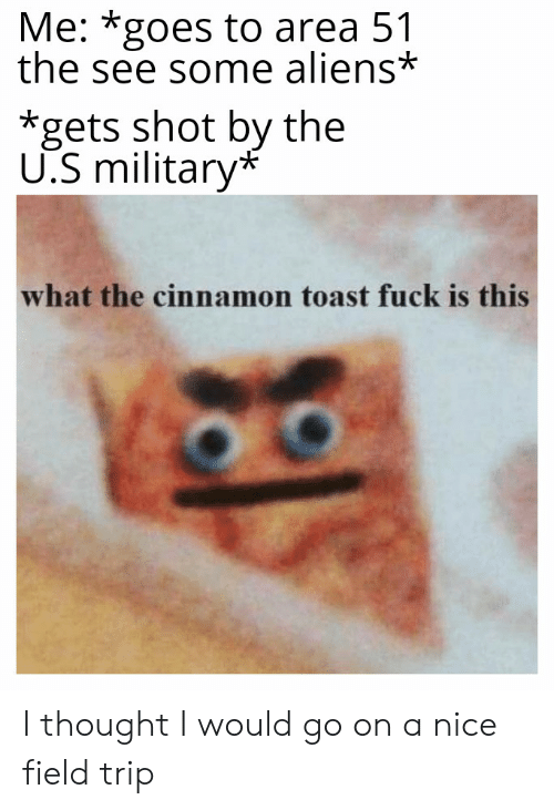 Field Trip, Reddit, and Aliens: Me: *goes to area 51  the see some aliens*  *gets shot by the  U.S military*  what the cinnamon toast fuck is this I thought I would go on a nice field trip