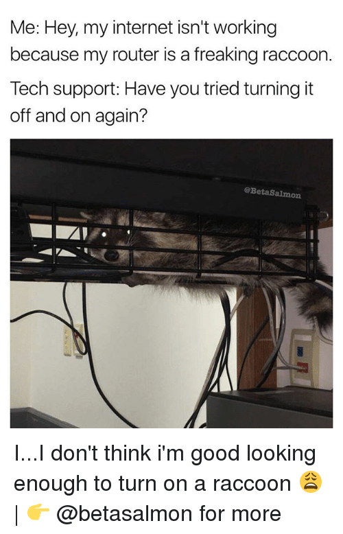 Teching: Me: Hey, my internet isn't working  because my router is a freaking raccoorn  Tech support: Have you tried turning it  off and on again?  @BetaSalmon  0 I...I don't think i'm good looking enough to turn on a raccoon 😩 | 👉 @betasalmon for more