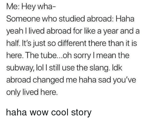 Lol, Sorry, and Subway: Me: Hey wha-  Someone who studied abroad: Haha  yeah l lived abroad for like a year and a  half. It's just so different there than it is  here. The tube...oh sorry I mean the  subway, lol I still use the slang. ldk  abroad changed me haha sad you've  only lived here haha wow cool story
