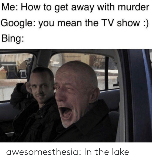 lake: Me: How to get away with murder  Google: you mean the TV show :)  Bing: awesomesthesia:  In the lake