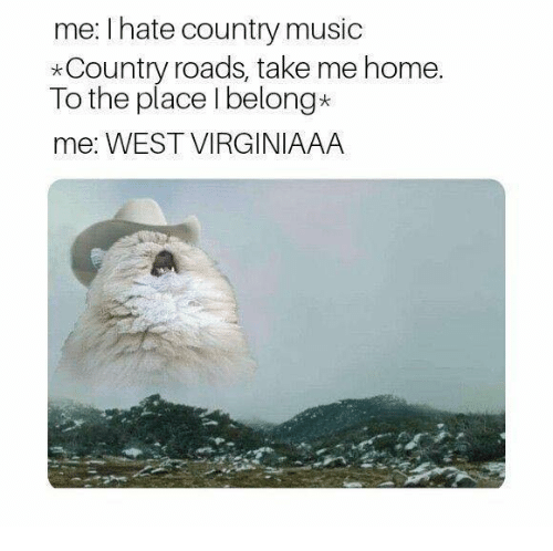 Music, Country Music, and Home: me: I hate country music  *Country roads, take me home.  To the place I belong*  me: WEST VIRGINIAAA