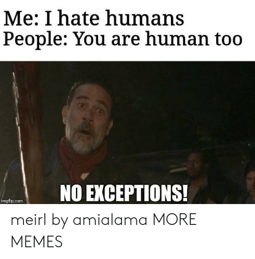 Dank, Memes, and Target: Me: I hate humans  People: You are human too  NO EXCEPTIONS!  imgflip.com meirl by amialama MORE MEMES