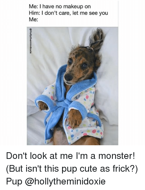 Frickly: Me: I have no makeup on  Him: I don't care, let me see you  Me: Don't look at me I'm a monster! (But isn't this pup cute as frick?) Pup @hollytheminidoxie