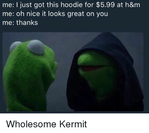 Wholesome, Nice, and Got: me: I just got this hoodie for $5.99 at h&m  me: oh nice it looks great on you  me: thanks <p>Wholesome Kermit</p>