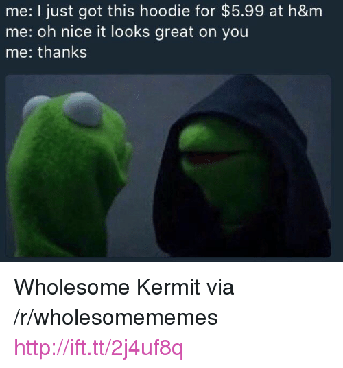 """Http, Wholesome, and Nice: me: I just got this hoodie for $5.99 at h&m  me: oh nice it looks great on you  me: thanks <p>Wholesome Kermit via /r/wholesomememes <a href=""""http://ift.tt/2j4uf8q"""">http://ift.tt/2j4uf8q</a></p>"""