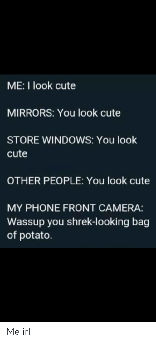 Bag Of: ME:I look cute  MIRRORS: You look cute  STORE WINDOWS: You look  cute  OTHER PEOPLE: You look cute  MY PHONE FRONT CAMERA:  Wassup you shrek-looking bag  of potato. Me irl