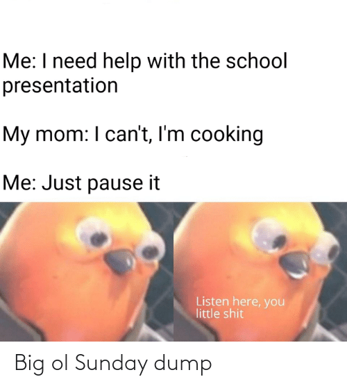 cooking: Me: I need help with the school  presentation  My mom: I can't, I'm cooking  Me: Just pause it  Listen here, you  little shit Big ol Sunday dump