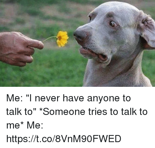 "Girl Memes, Never, and Me Me: Me: ""I never have anyone to talk to""  *Someone tries to talk to me*   Me: https://t.co/8VnM90FWED"