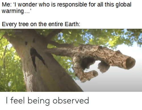 Global Warming, Earth, and Tree: Me: I wonder who is responsible for all this global  warming....  Every tree on the entire Earth:  OCARTOON I feel being observed