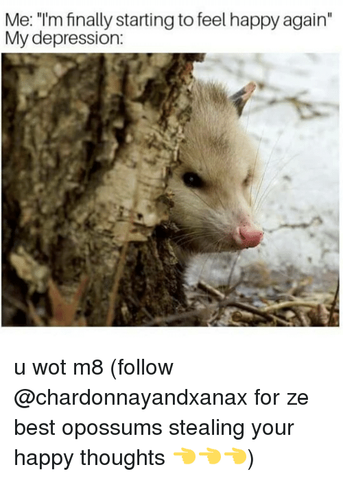 "happy thoughts: Me: ""I'm finally starting to feel happy again""  My depression: u wot m8 (follow @chardonnayandxanax for ze best opossums stealing your happy thoughts 👈👈👈)"