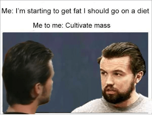 Memes, Diet, and Fat: Me: I'm starting to get fat l should go on a diet  Me to me: Cultivate mass