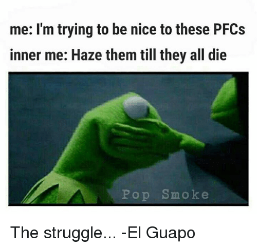 Memes, Pop, and Struggle: me: I'm trying to be nice to these PFCs  inner me: Haze them till they all die  Pop Smoke The struggle... -El Guapo