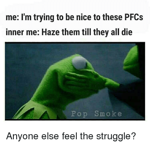 Memes, Pop, and Struggle: me: I'm trying to be nice to these PFCs  inner me: Haz  e them till they all die  Pop Smoke Anyone else feel the struggle?