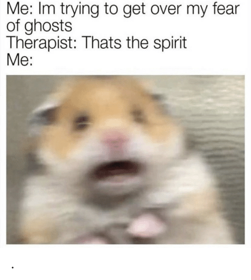 Spirit, Fear, and Ghosts: Me: Im trying to get over my fear  of ghosts  Therapist: Thats the spirit  Me: .