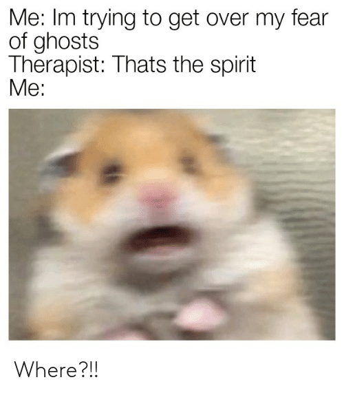 Spirit, Fear, and Ghosts: Me: Im trying to get over my fear  of ghosts  Therapist: Thats the spirit  Мe: Where?!!