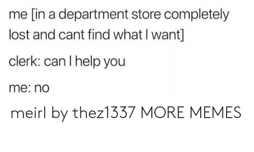 Dank, Memes, and Target: me [in a department store completely  lost and cant find what I want]  clerk: can I help you  me: no meirl by thez1337 MORE MEMES