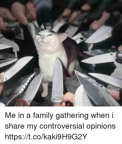 Family, Memes, and Controversial: Me in a family gathering when i share my controversial opinions https://t.co/kaki9H9G2Y