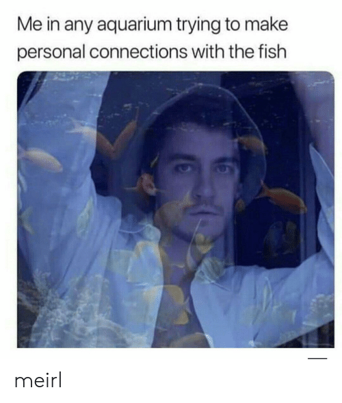 Aquarium, Fish, and MeIRL: Me in any aquarium trying to make  personal connections with the fish meirl