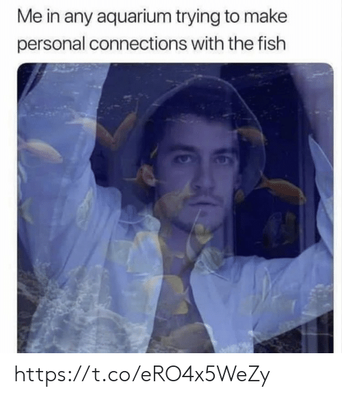 Memes, Aquarium, and Fish: Me in any aquarium trying to make  personal connections with the fish https://t.co/eRO4x5WeZy