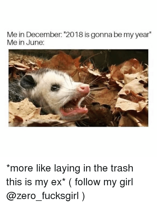 """Trash, Zero, and Girl: Me in December: """"2018 is gonna be my year""""  Me in June: *more like laying in the trash this is my ex* ( follow my girl @zero_fucksgirl )"""