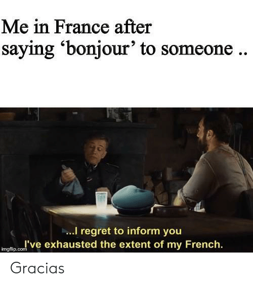 Regret: Me in France after  saying 'bonjour' to someone..  I regret to inform you  I've exhausted the extent of my French  imgflip.com Gracias