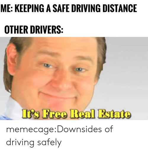 Driving, Tumblr, and Blog: ME: KEEPING A SAFE DRIVING DISTANCE  OTHER DRIVERS  's Free Real Estato memecage:Downsides of driving safely