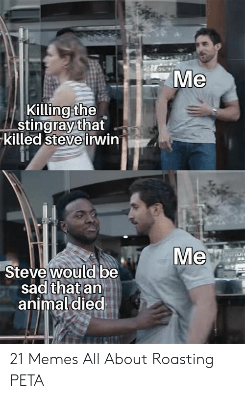 Memes, Steve Irwin, and Peta: Me  Killing the  stingray that  killed steve irwin  Ve  Steve would be  sad that an  animal died 21 Memes All About Roasting PETA