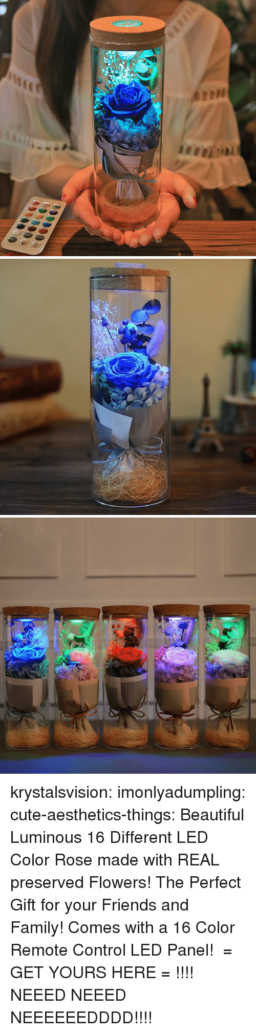Beautiful, Cute, and Family: me krystalsvision: imonlyadumpling:  cute-aesthetics-things:  Beautiful Luminous 16 Different LED Color Rose made with REAL preserved Flowers! The Perfect Gift for your Friends and Family! Comes with a 16 Color Remote Control LED Panel! = GET YOURS HERE =   !!!!    NEEED NEEED NEEEEEEDDDD!!!!