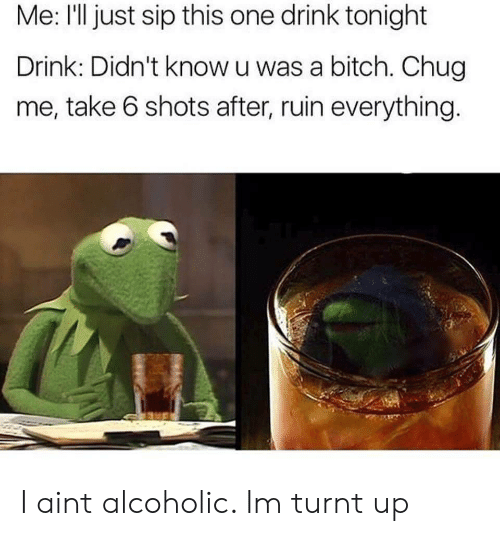 take 6: Me: l just sip this one drink tonight  Drink: Didn't know u was a bitch. Chug  me, take 6 shots after, ruin everything I aint alcoholic. Im turnt up