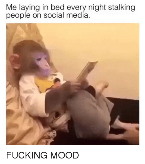 Fucking, Funny, and Mood: Me laying in bed every night stalking  people on social media. FUCKING MOOD