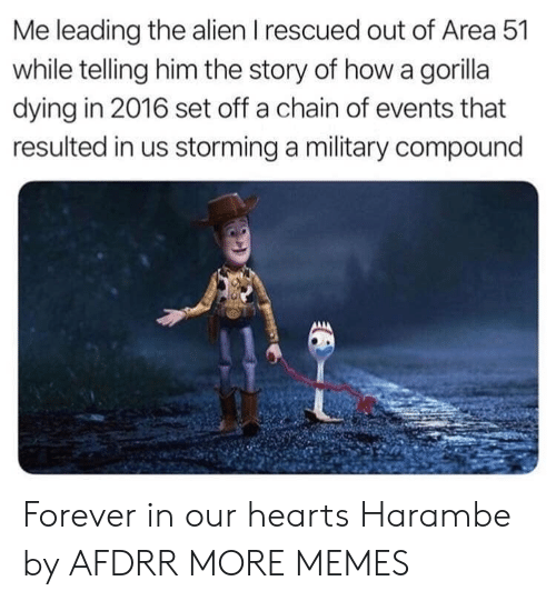 Dank, Memes, and Target: Me leading the alien I rescued out of Area 51  while telling him the story of how a gorilla  dying in 2016 set off a chain of events that  resulted in us storming a military compound Forever in our hearts Harambe by AFDRR MORE MEMES