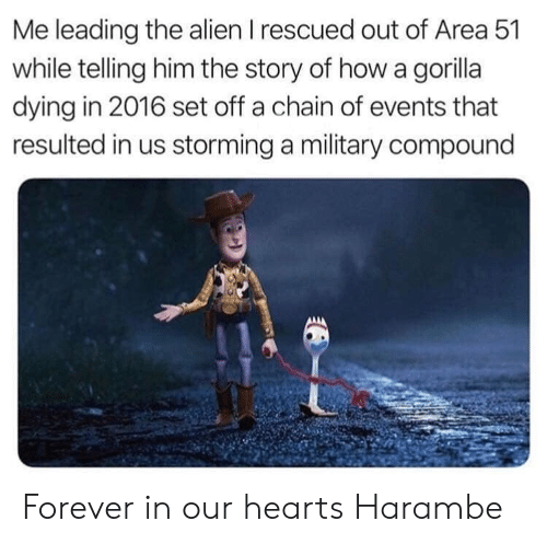 Alien, Forever, and Hearts: Me leading the alien I rescued out of Area 51  while telling him the story of how a gorilla  dying in 2016 set off a chain of events that  resulted in us storming a military compound Forever in our hearts Harambe
