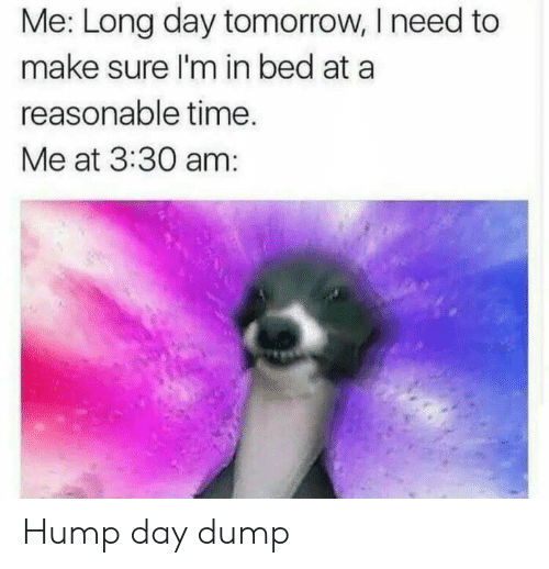 Hump Day, Time, and Tomorrow: Me: Long day tomorrow, I need to  make sure I'm in bed at a  reasonable time.  Me at 3:30 am: Hump day dump