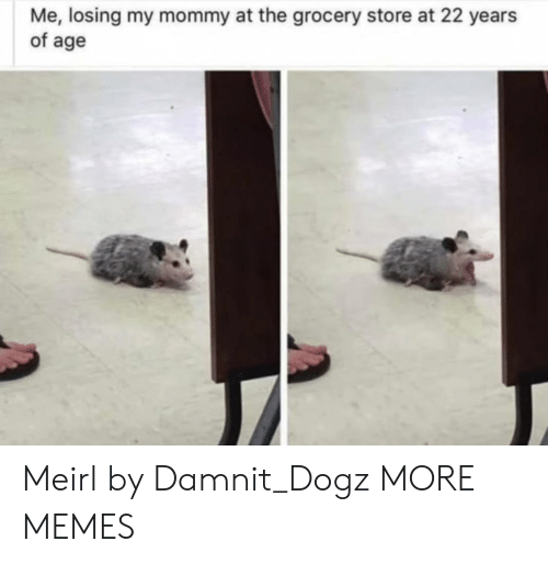 Dank, Memes, and Target: Me, losing my mommy at the grocery store at 22 years  of age Meirl by Damnit_Dogz MORE MEMES