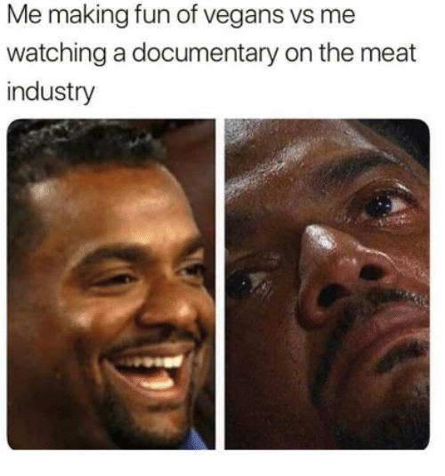 Fun, Meat, and Making: Me making fun of vegans vs me  watching a documentary on the meat  industry