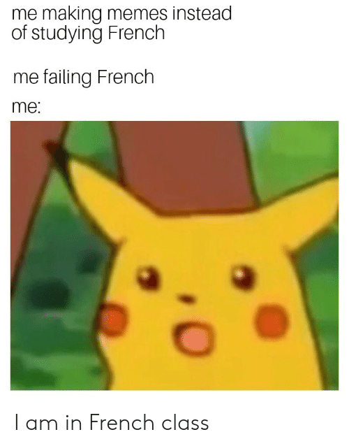 Funny, Memes, and French: me making memes instead  of studying French  me failing French  me: I am in French class