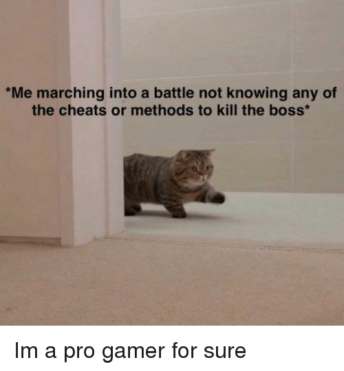 Marching: Me marching into a battle not knowing any of  the cheats or methods to kill the boss Im a pro gamer for sure