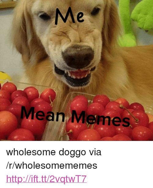 "Mean Memes: Me  Mean Memes <p>wholesome doggo via /r/wholesomememes <a href=""http://ift.tt/2vqtwT7"">http://ift.tt/2vqtwT7</a></p>"