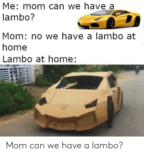 Home, Mom, and Can: Me: mom can we have a  lambo?  Mom: no we have a lambo at  home  Lambo at home:  82 858 41 Mom can we have a lambo?