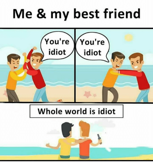 Best Friend, Memes, and Best: Me & my best friend  You're You're  idiot idiot  Whole world is idiot