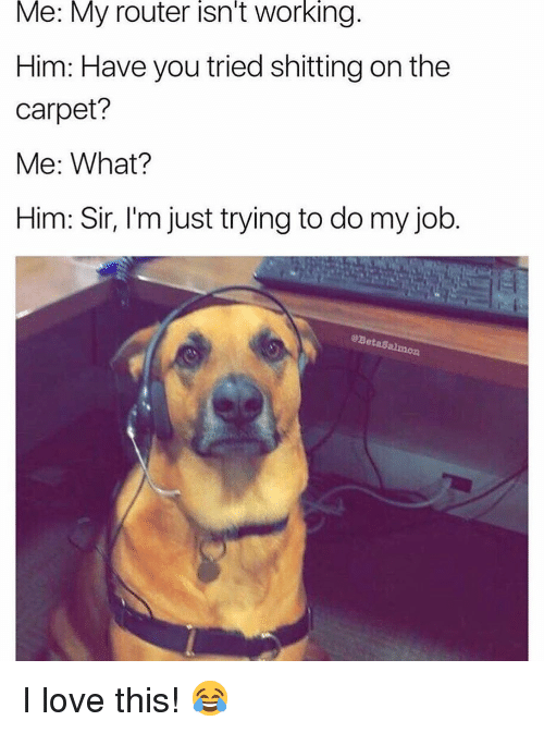 Love, Memes, and Router: Me: My router isn't working.  Him: Have you tried shitting on the  carpet?  Me: What?  Him: Sir, l'm just trying to do my job.  @BetaSalmon I love this! 😂